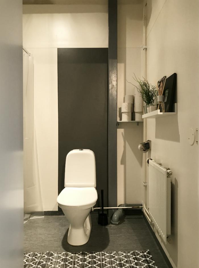 toalett_offentligmiljo_tavellist_plastmatta_